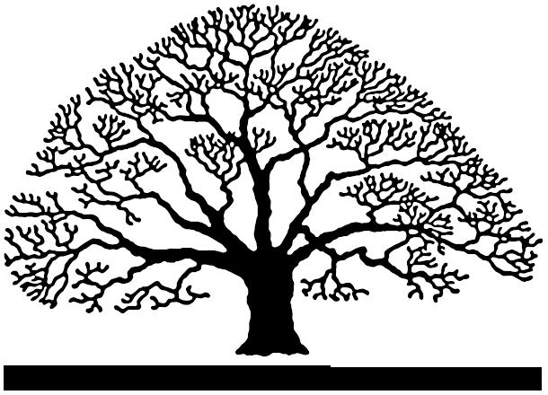 Dartmoor Tree Surgeons Logo