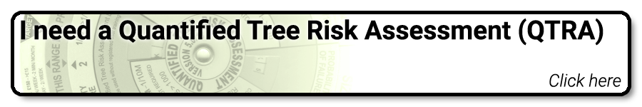 I need a Quantified Tree Risk Assessment (QTRA) report